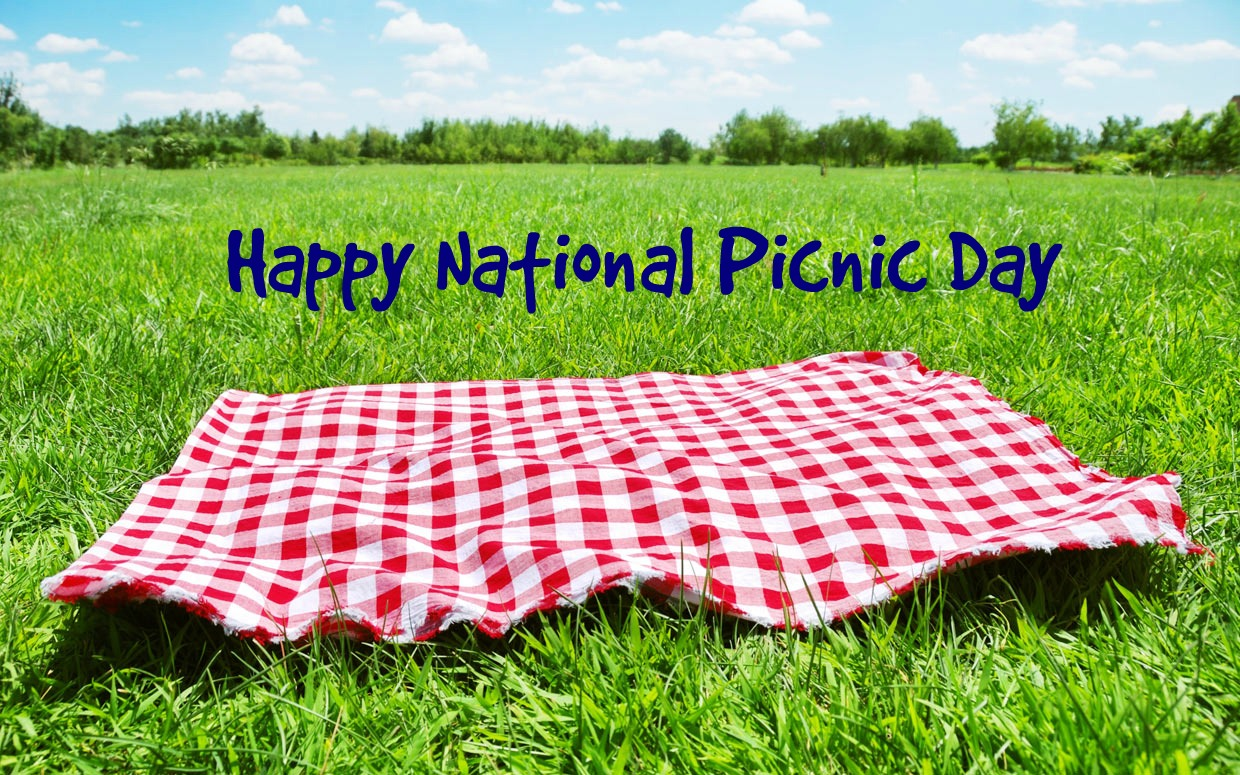 picnic day 13 reviews of food picnic day the food here is amazing i, personally, love the beef bone soup it's simple yet so soothing the beef is really thin and moist the soup is hot and simple topped with scallions they give out banchan (side dishes.